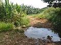 Carmo de Minas - State of Minas Gerais, Brazil - panoramio.jpg