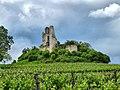 Carsac-de-Gurson, le château de Gurson.jpg