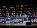 Cast and Creators Daredevil Panel NYCC 2015.jpg