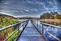 Castle Lake Bailieboro.jpg