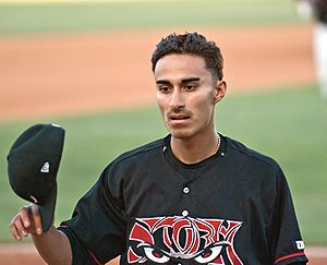 Cesar Carrillo - Carrillo with the Lake Elsinore Storm in 2008