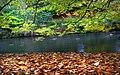 Changing seasons. (15399622426).jpg