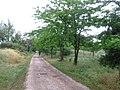 Chemin VTT - panoramio.jpg