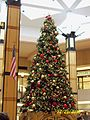 Christmas tree at Northbrook Court 2010.JPG