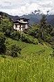 Chuba, Punakha, Bhutan (13).jpg