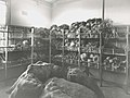 Chullora Railway Canteen - vegetable storage area (24239507885).jpg