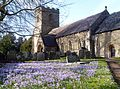 Church at Bishops Frome - Flickr - gailhampshire.jpg