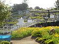 Cimetière à La Réunion.JPG