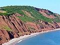 Cliffs above Littleham Cove - geograph.org.uk - 1339643.jpg