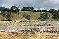 Coastal Farm New Zealand-1627.jpg