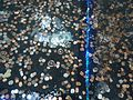 Coins and bills under a foot of water in water tank in mall in New Jersey.JPG