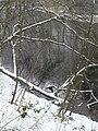 Colwick Hall lake - geograph.org.uk - 1163697.jpg