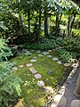 Como Park Zoo and Conservatory - 61.jpg