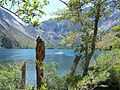 Convict Lake through the Trees.JPG