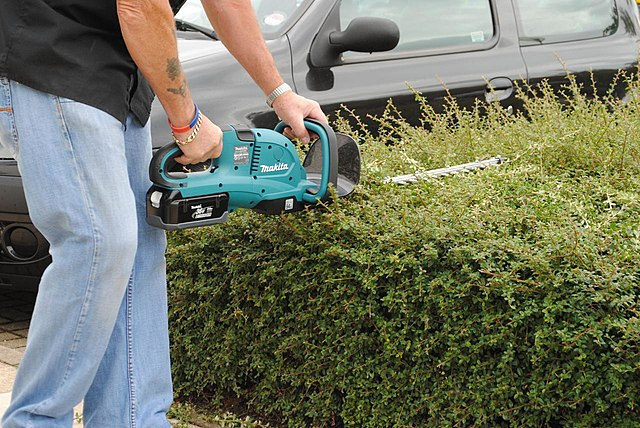 Mark Hunter / CC BY (https://creativecommons.org/licenses/by/2.0) - Cordless electric hedge trimmer 2