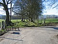 Corner of Lane to Bodidris Hall Hotel - geograph.org.uk - 348737.jpg