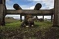 Corporals Prove Resiliency 140225-M-DP650-006.jpg
