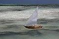 Course de bateaux Jambiani, Zanzibar 2.jpg