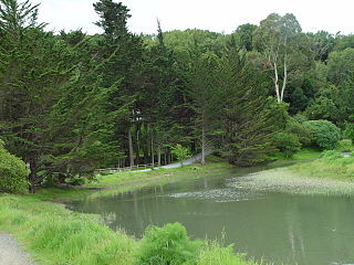 Coyote Creek (Marin County)