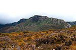 Cradle mountain foothills - tasmania.jpg