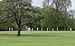Cricket à Hyde Park.jpg