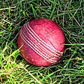 Cricket ball at North London Cricket Club, Haringey, London 1.jpg