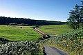 Cringle Dam - geograph.org.uk - 40729.jpg