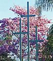 Crosses, Redlands 2-23-14 (13334623273).jpg