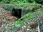 Culter House air raid shelter - geograph.org.uk - 607206.jpg