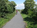 Cyclist on the Tarka Trail - geograph.org.uk - 1331542.jpg