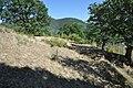 Dacian Fortress of Capalna 035.jpg