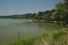 Danube-morava confluence 1.jpg