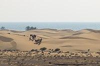 Darak Beach 1.jpg