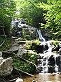 Dark Hollow Falls - panoramio.jpg
