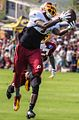 DeSean Jackson Redskins training camp Cropped.jpg