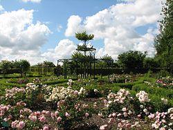 De Kruidhof Buitenpost rosarium.jpg