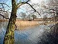 Deeping Lakes NR near Peterborough - geograph.org.uk - 162224.jpg