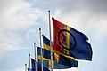 Den samiska flaggan.jpg