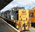 Diesel Locomotives Dunedin (30698249294).jpg