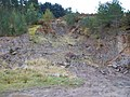 Disused quarry on Dowglen Hill - geograph.org.uk - 1540995.jpg