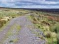 Disused railway below Howdale Hill - geograph.org.uk - 895131.jpg