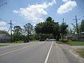 Docville Oaks StBernard 1.JPG