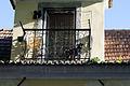 Dog on a balcony (8218134702).jpg