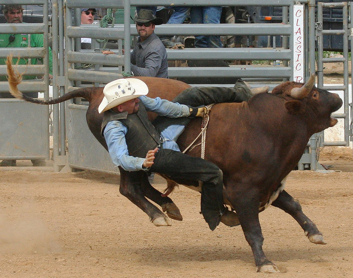 Rodeo Wikipedie