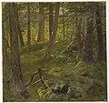Drawing, Jungle Vegetation, 1865 (CH 18200643).jpg