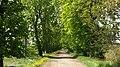 Droga do ... - panoramio.jpg