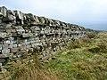 Dry stone wall on Oakworth Moor - geograph.org.uk - 1258171.jpg