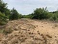 Dunes Charmes Sermoyer 35.jpg