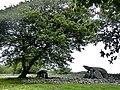 Dyffryn Burial Chamber - panoramio (3).jpg