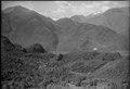 ETH-BIB-Arcegno (Losone), Campo Enrico Pestalozzi-LBS H1-013032.tif